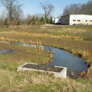 Ecological Detention Basin Design