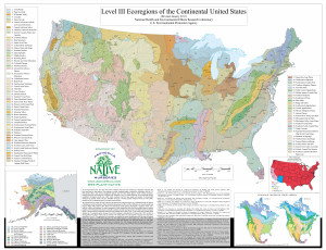 EcoRegion Level III US - courtesy of ArcheWild Native Nurseries 15x11