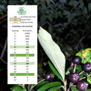 Native Planting Spacing Calculator