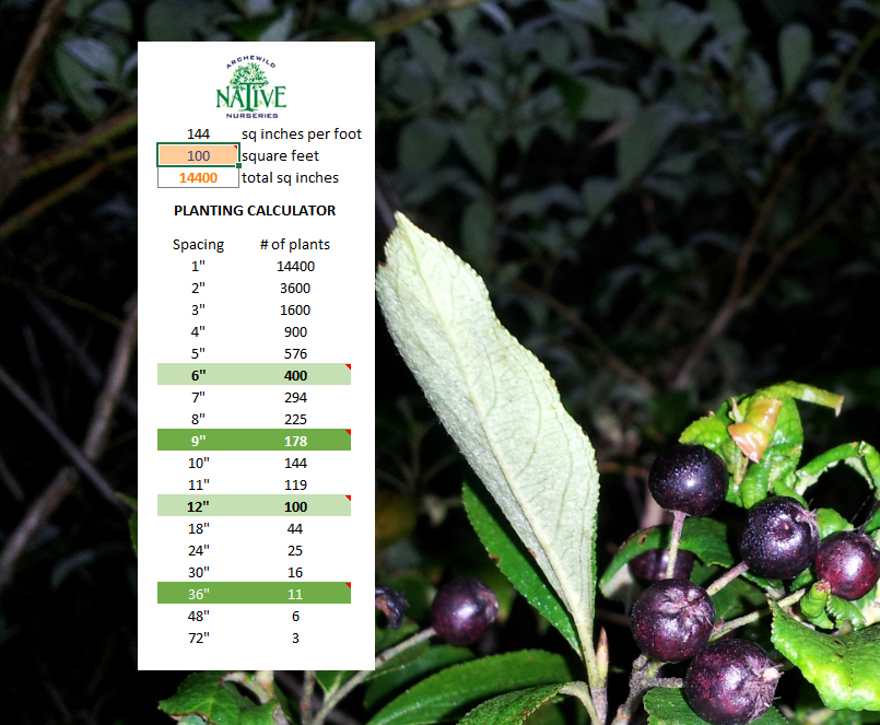 ArcheWild – Plant Spacing Calculator