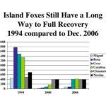 Channel Island Fox Chart