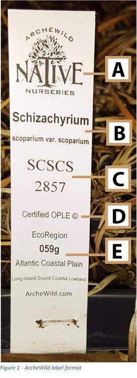 ArcheWild Plant Labeling Figure 1