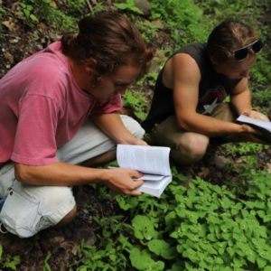 ArcheWild, Wonderful West Virginia: Cultivating Our Employees Through Explorative Education.
